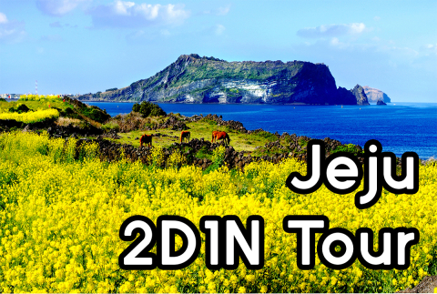 Jeju 2D1N Private Tour Package