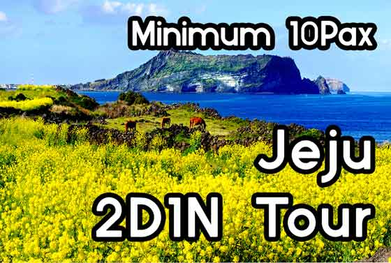 Jeju 2D1N Private Group Package(10Pax~)
